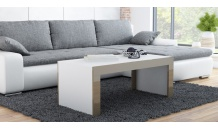 Konferenční stolek TESS 120x60 bílý mat/latte lesk