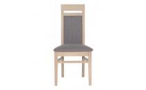 Jídelní židle AXEL AX-13